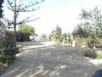 Finca in El Altet (5)