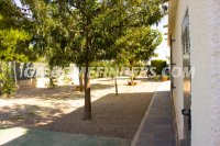 Detached Villa in Elche - Elx (29)