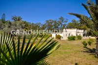 detached villa in el altet (0)