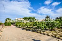 detached villa in elche - elx (35)