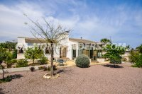 Detached Villa in Elche - Elx (26)