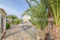 Detached Villa in Valverde (22)