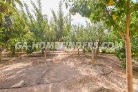 Detached Villa in Valverde (24)