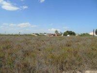 Finca in Las Bayas (1)