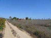 Finca in Las Bayas (3)