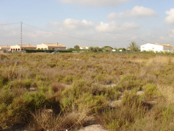 12,000m2 land, Catral
