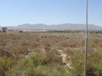 Investment opportunity. Finca and mobile home park. (15)