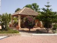 Property of the month. & bed villa in Catral for long term rental. (8)