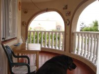 4 bedroom detached villa in Catral for long term rental (4)
