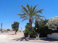 2 bedroom mobile home on Mi-Sol Park Torrevieja (36)