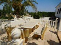 4 bedroom Villa in Catral on Rent To Buy (12)