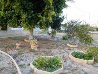 Fully legal 3 bedroom Villa in Callosa del Segura (43)