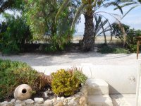 Stunning 3 bedroom, 3 bathroom Finca in San Felipe Neri (3)