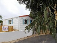 Freehold property in Torrevieja (19)