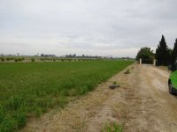 Plot of land for a mobile home, in Dolores for rent. (3)