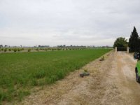 Plot of land for a mobile home, in Dolores for rent. (0)