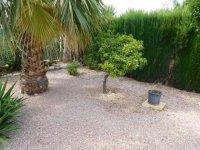 Great 2 bed Park Home on 450m2 plot, Crevillente (7)
