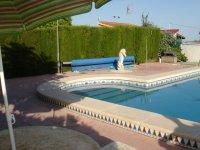 Great 2 bed Park Home on 450m2 plot, Crevillente (40)