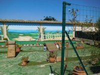 Stunning detached villa with pool, in Catral (19)