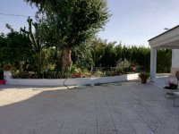 VILLA WITH WAREHOUSE FOR SALE IN CATRAL (4)