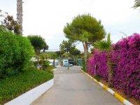 Willerby Vogue on Camping Florantilles, Torrevieja (33)