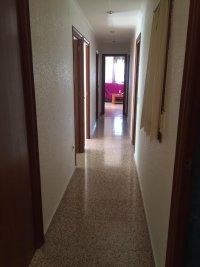 Spacious flat for sale in catral (12)