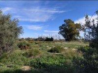 Rustic finca with 40,000m2 of building land. (10)
