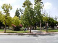 Long term rental in Torrevieja (20)