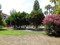 Long term rental in Torrevieja (21)