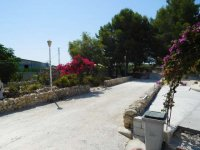 Country property on the outskirts of catral for rent. (45)