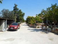 Country property on the outskirts of catral for rent. (48)
