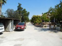Country property on the outskirts of catral for rent. (50)
