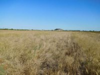 Private plots of freehold land for mobile homes (1)