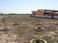 LP 121 plot of land, Dolores (0)