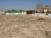 LP 121 plot of land, Dolores (4)