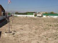 LP 121 plot of land, Dolores (5)