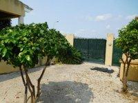 Banderas house, Catral-Callosa (2)