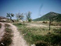 LP 122  3 land plots in Zarzadilla de Totana (0)