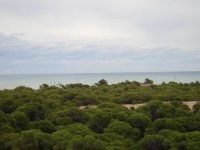 LL 711 Guardamar apartment, sea views!!! (10)