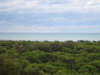 LL 711 Guardamar apartment, sea views!!! (3)