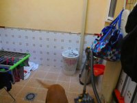 Spacious Town House in Catral (12)