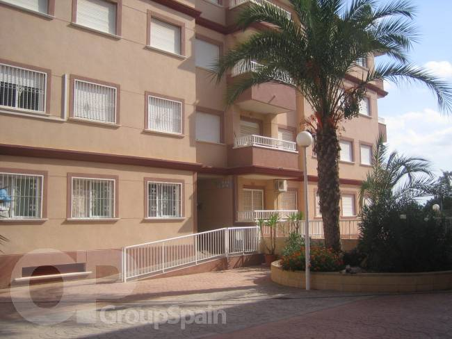 Cecilia apartment in Algorfa