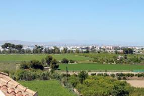 Penthouse Apartment in Algorfa (12)