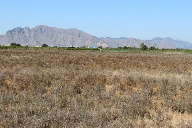 Great Plot of Land for Sale with Fantastic Views
