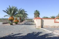 Stunning 4 bed detached finca with large private pool and separate apartment  (16)