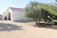 Stunning 4 bed detached finca with large private pool and separate apartment  (17)