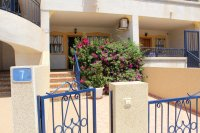 Apartment in Torrevieja (17)
