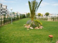 Apartment in Torrevieja (18)