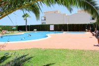 Apartment in Torrevieja (20)