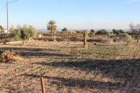 3 bed finca, with private pool on 2,000m2 south facing plot (16)